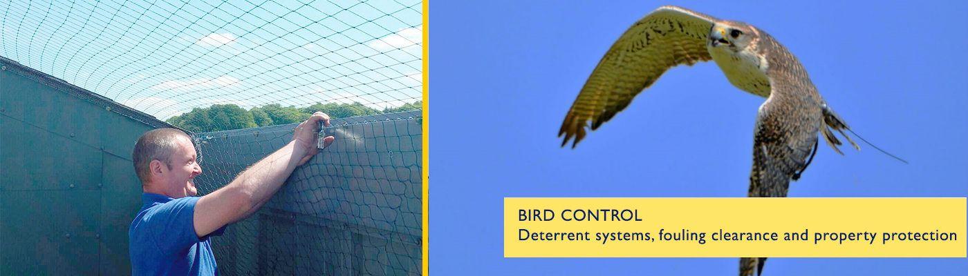 Bird Control   CSS Commerical